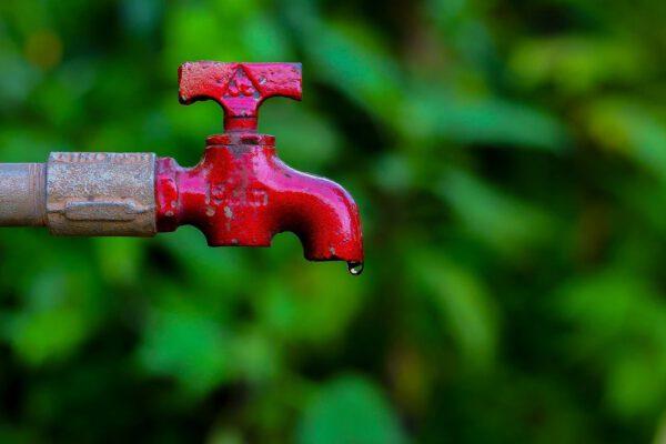 Wasser sparen mit dem Gartenwasserzähler von Allmess.